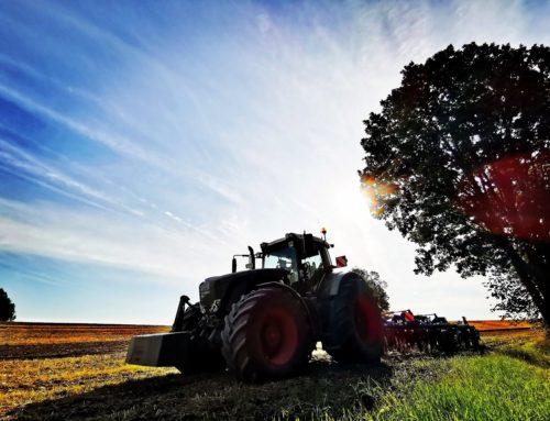Fotonachlese Pflanzenproduktion 2019