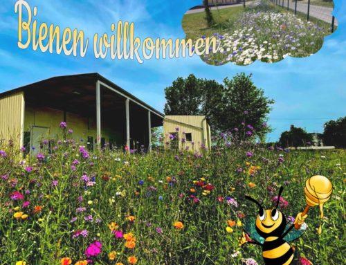 """Bienen willkommen…bei uns in der """"Bienentanke""""…"""