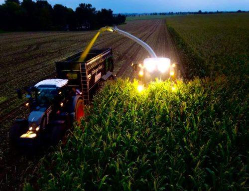 Was brummt denn da in dunkler Nacht?…der Mais wird wieder eingebracht